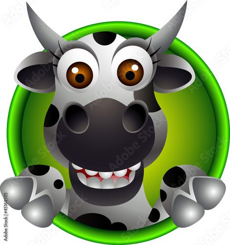 kreskowka-krowa-ladny-krowy