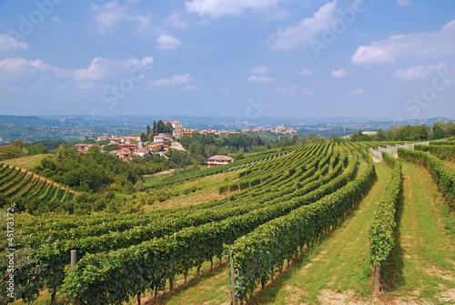 Photo das bekannte Weinanbaugebiet Langhè bei Asti im Piemont