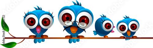 rodzina-cute-niebieskie-ptaki