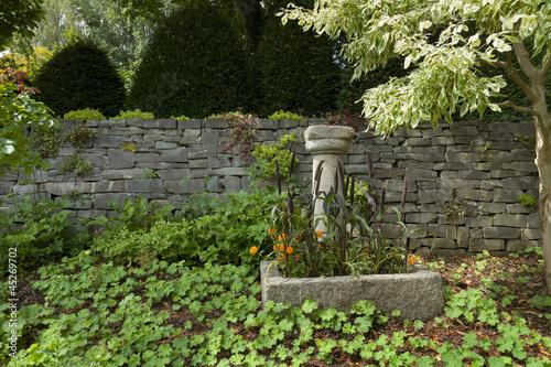 Fototapeta exotic garden obraz na płótnie