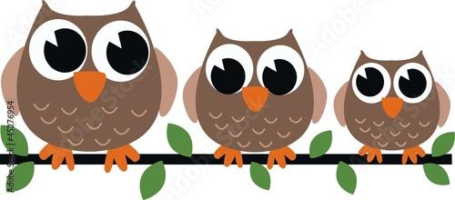 Canvas Prints Owls cartoon three brown owls
