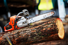 Motorsäge Auf Baumstamm
