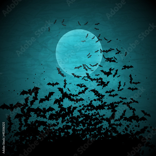 Photo Halloween vector background with moon and bats.