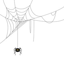 Vector Illustration Of A Spide...