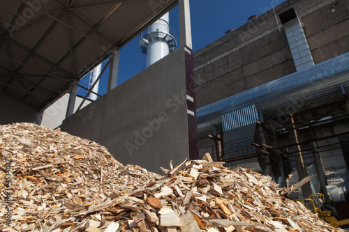 Wood chips Canvas-taulu