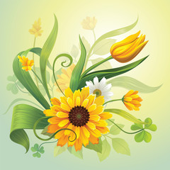 Fototapeta Tulipany yellow flowers and leaves botanical nature illustration