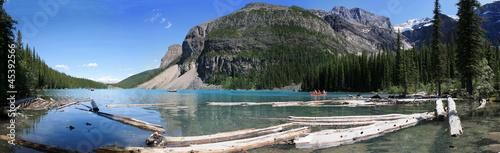 Spoed Foto op Canvas Canada Moraine lake et bois