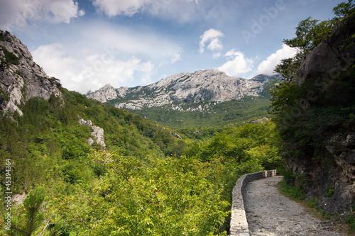 Fotografie, Obraz  Footpath on mountain, Velebit, Croatia