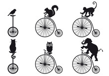 Retro Bicycle With Animals, Ve...