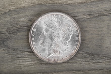High Qaulity Silver Dollar On Aging Wood