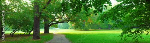 park-w-czasie-jesieni