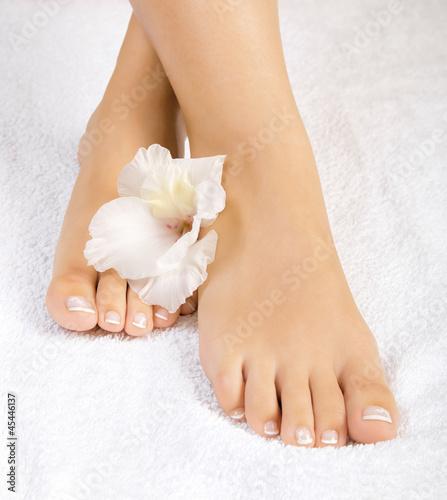 Fotografie, Obraz  beautiful female feet