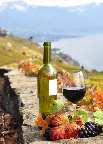 Foto op Canvas Alcohol Red wine and grapes on the terrace vineyard in Lavaux region, Sw