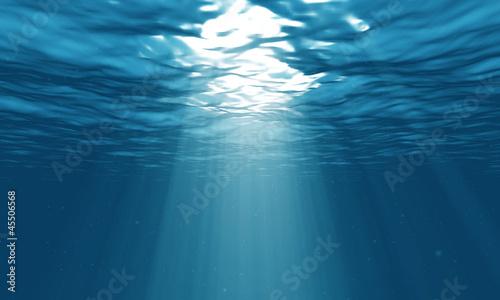 Poster Waterlelies light underwater in the ocean