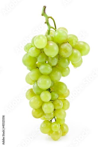 Fotografia, Obraz  White grape