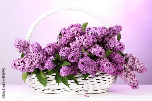 Fotobehang Lilac beautiful lilac flowers in basket on purple background