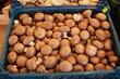 Champinons auf dem Markt