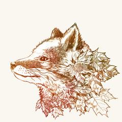 Fototapeta Autumn fox