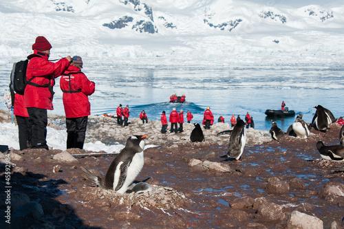 Foto auf Gartenposter Antarktika Picturing adelie penguins on the beach