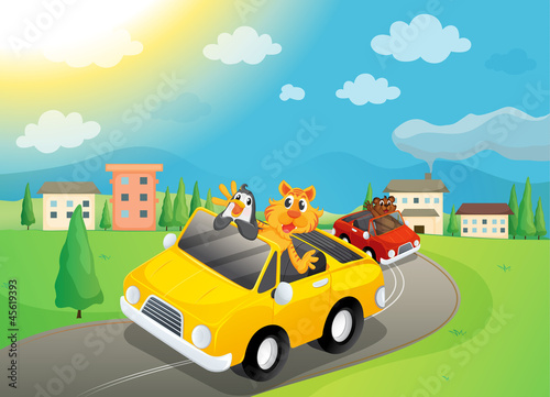 Foto op Canvas Cars animals in car