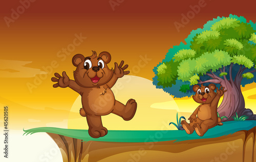 Poster Ours bear cubs