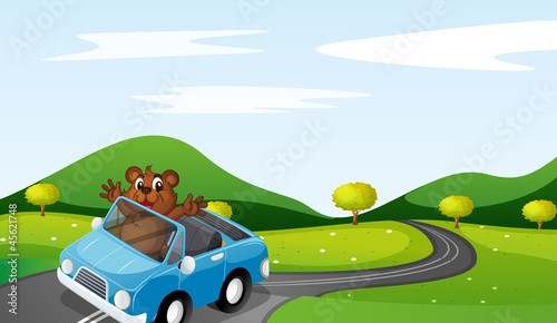 Foto op Canvas Cars bear and car