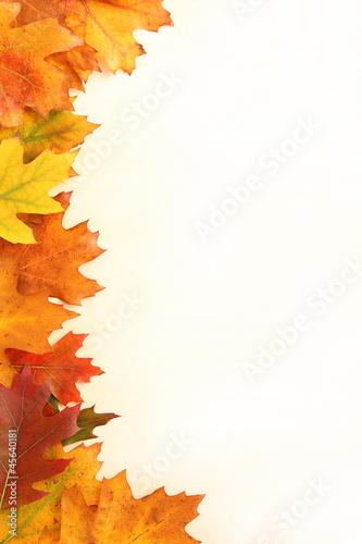 Photo  Autumn leaves frame