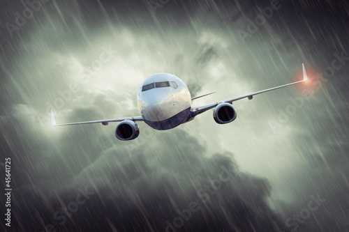 Stormy Flight Canvas Print