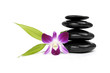 stacked stones and pink orchid with green leaf