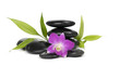 Beautiful orchid and bamboo leaf with stacked stones
