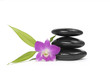 Zen pebbles balance. Three orchid and bamboo leaf