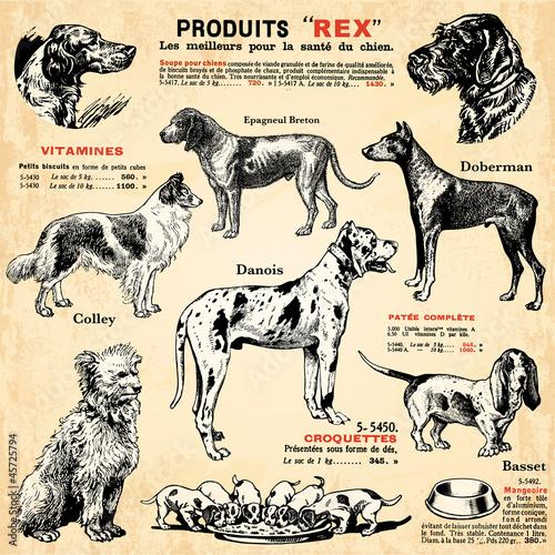 Deurstickers Kranten Les chiens