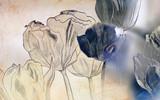 smutny rysunek karty - 45751909