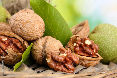 Fotomural walnuts with green leaves in garden, on green background