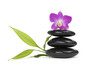 Pink orchid, Zen pebbles balance. and bamboo leaf