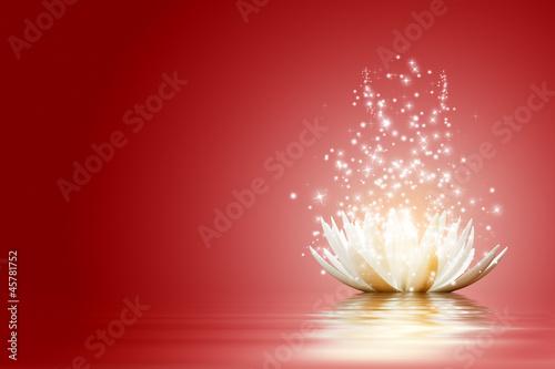 Lotus flower #45781752