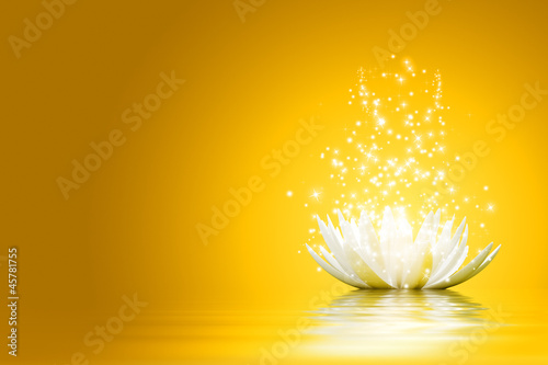 Lotus flower #45781755