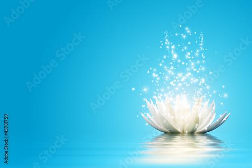 Lotus flower #45781759