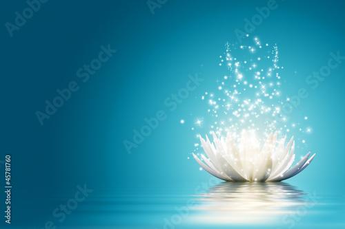 Lotus flower #45781760