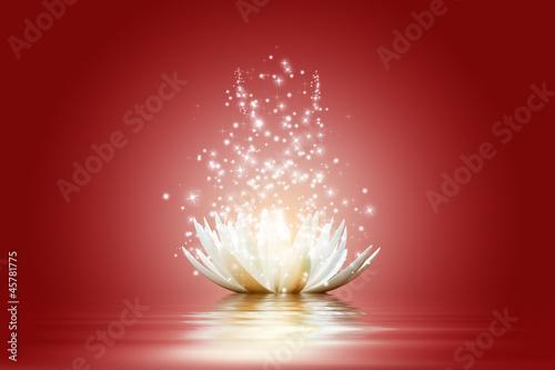 Lotus flower #45781775
