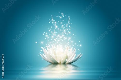 Lotus flower #45781778