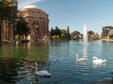 Palais Des Beaux Arts De San Francisco