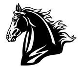 horse head black white