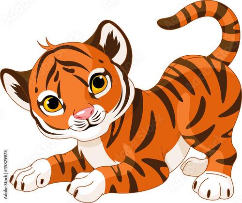 Poster de jardin Zoo Playful tiger cub