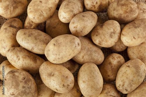 Fotografie, Obraz Fresh Organic Whole Potato