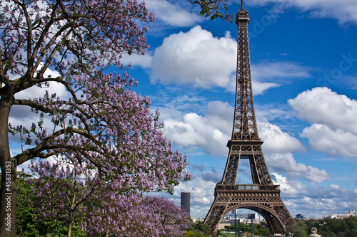 The Eiffel Tower in the Spring