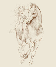 Horse And Rider. Based On Drawing Of Leonardo Da Vinci