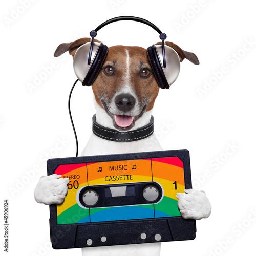 kaseta-z-muzyka-tasma-sluchawki-pies