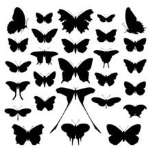 Butterflies Silhouette Set. Ve...