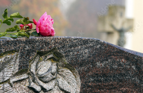 Fotografie, Obraz  Grabstein mit Rose, Friedhof, Copy space